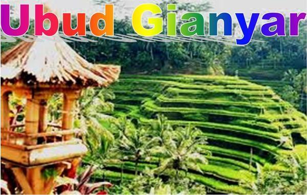 TANAH MURAH DI BALI, TANAH MURAH DI UBUD, TANAH DIJUAL DI UBUD Bali, UBUD, INVESTASI PROPERTI DI BALI, murah, properti, tanah di UBUD, property di Bali, DIJUAL TANAH DI UBUD Bali