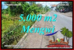 DIJUAL MURAH TANAH di Badung Bali 5,000 m2 di Mengwi