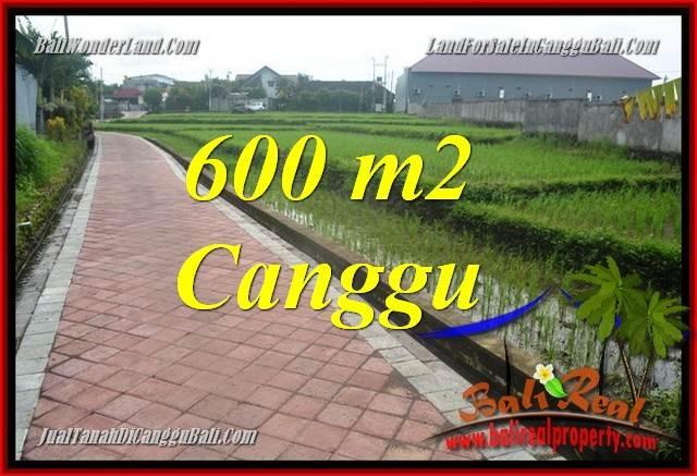 DIJUAL TANAH MURAH di CANGGU BALI Untuk INVESTASI TJCG220