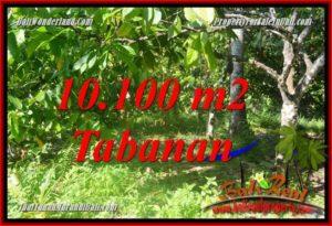 TANAH DIJUAL di TABANAN 101 Are View kebun