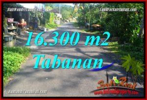 JUAL MURAH TANAH di TABANAN BALI 163 Are View kebun