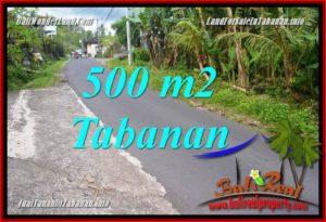 INVESTASI PROPERTI, DIJUAL MURAH TANAH di TABANAN BALI TJTB362