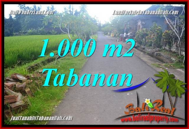 TANAH MURAH  di TABANAN BALI DIJUAL 1,000 m2  View sawah
