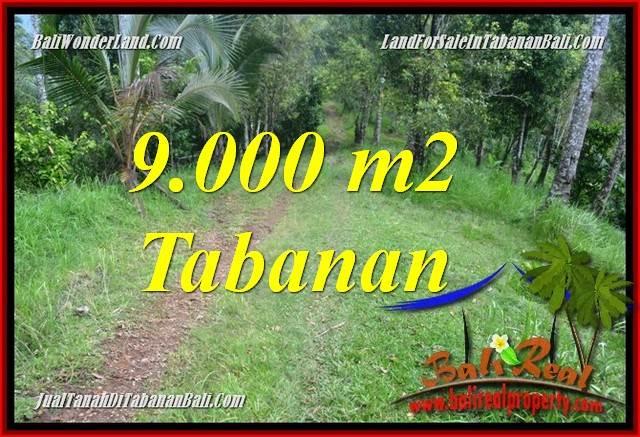 JUAL MURAH TANAH di TABANAN BALI 90 Are View kebun