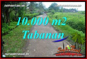 JUAL TANAH di TABANAN 10,000 m2 View sawah