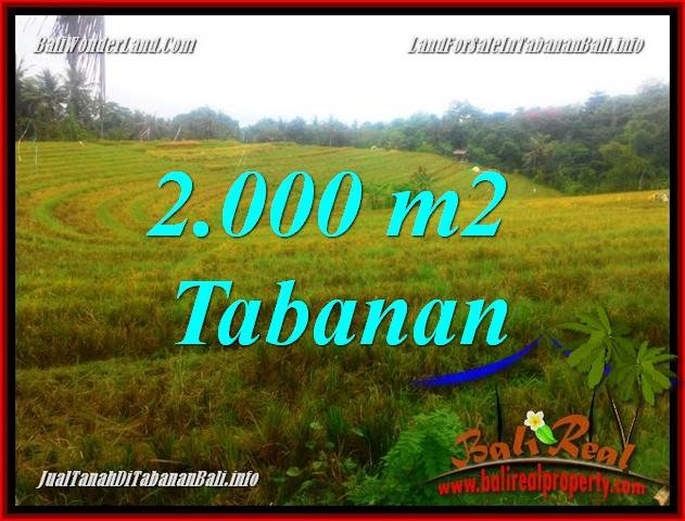 TANAH JUAL MURAH  TABANAN BALI 2,000 m2  View Laut, Gunung dan Sawah