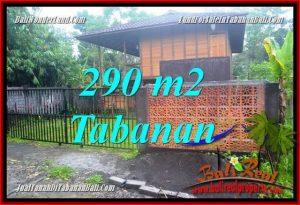 TANAH MURAH di TABANAN BALI DIJUAL 290 m2 View kebun