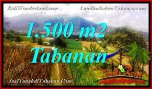 DIJUAL MURAH TANAH di TABANAN BALI 1,500 m2 di Tabanan Bedugul