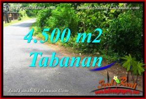 JUAL MURAH TANAH di TABANAN BALI 4,500 m2 View Kebun