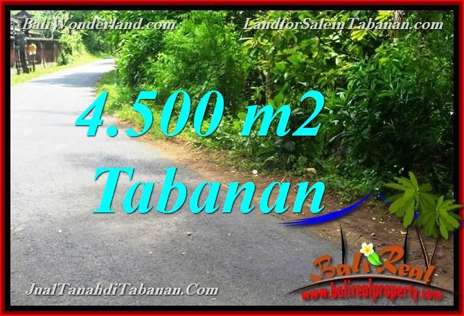 TANAH DIJUAL di TABANAN BALI 4,500 m2 di Tabanan Selemadeg