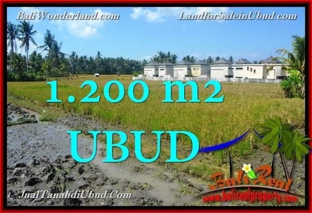 DIJUAL MURAH TANAH di UBUD 12 Are di Sentral Ubud