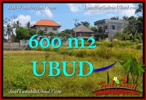 JUAL TANAH di UBUD BALI 600 m2  View Sawah link Villa