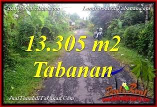 JUAL TANAH MURAH di TABANAN BALI 13,305 m2  View Kebun dan Sungai