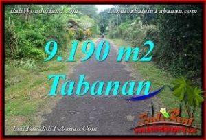 TANAH MURAH di TABANAN BALI DIJUAL 91.9 Are di Tabanan Selemadeg Timur