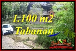 TANAH di TABANAN BALI DIJUAL MURAH View Danau Beratan dan Gunung