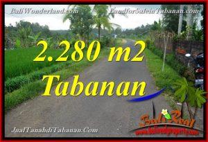 TANAH DIJUAL di TABANAN BALI 2,280 m2  View Laut, Gunung dan sawah