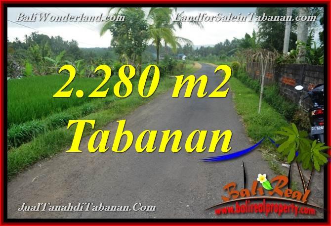 TANAH DIJUAL di TABANAN BALI 22.8 Are View Laut, Gunung dan sawah