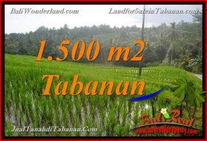 INVESTASI PROPERTI, DIJUAL TANAH MURAH di TABANAN BALI TJTB375