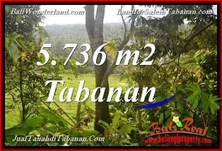 JUAL MURAH TANAH di TABANAN BALI View Sungai