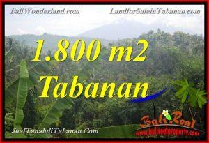 TANAH DIJUAL di TABANAN BALI 1,800 m2 View Gunung