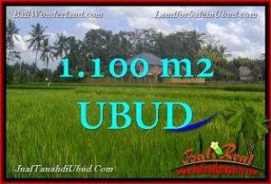 TANAH di UBUD BALI DIJUAL MURAH 1,100 m2 di Ubud Pejeng