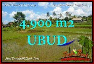 TANAH di UBUD JUAL 49 Are View Sawah link Villa