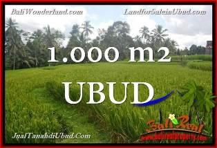 TANAH di UBUD BALI DIJUAL MURAH 10 Are View Sawah link Villa