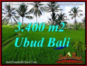 INVESTASI PROPERTI, DIJUAL TANAH MURAH di UBUD BALI TJUB656