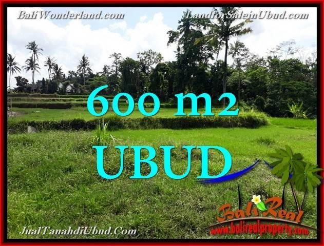 TANAH MURAH DIJUAL di UBUD BALI 600 m2 di Ubud Pejeng