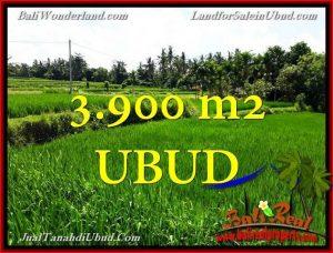 DIJUAL TANAH MURAH di UBUD Untuk INVESTASI TJUB658