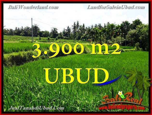 TANAH di UBUD JUAL 39 Are View Sawah link Villa