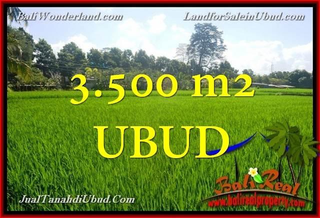 TANAH DIJUAL MURAH di UBUD BALI 3,500 m2 di Ubud Gianyar