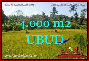 JUAL MURAH TANAH di UBUD BALI 40 Are View Kebun / tebing