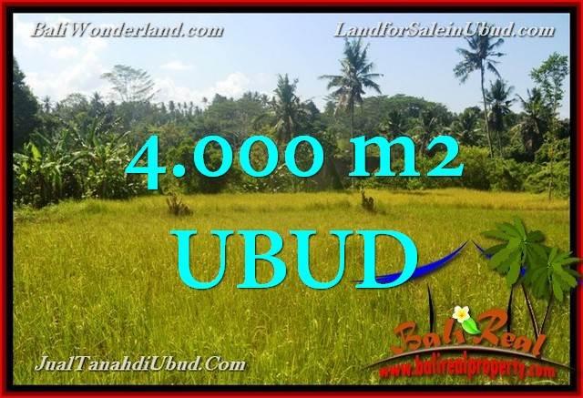 DIJUAL TANAH di UBUD BALI Untuk INVESTASI TJUB661
