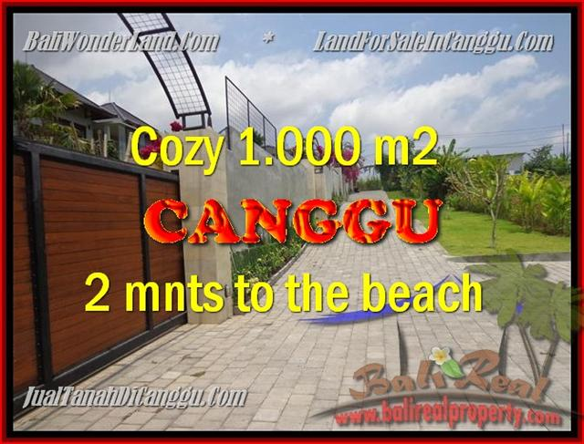 TANAH di CANGGU BALI DIJUAL 1.000 m2  View Sawah dan sungai , lingkungan villa