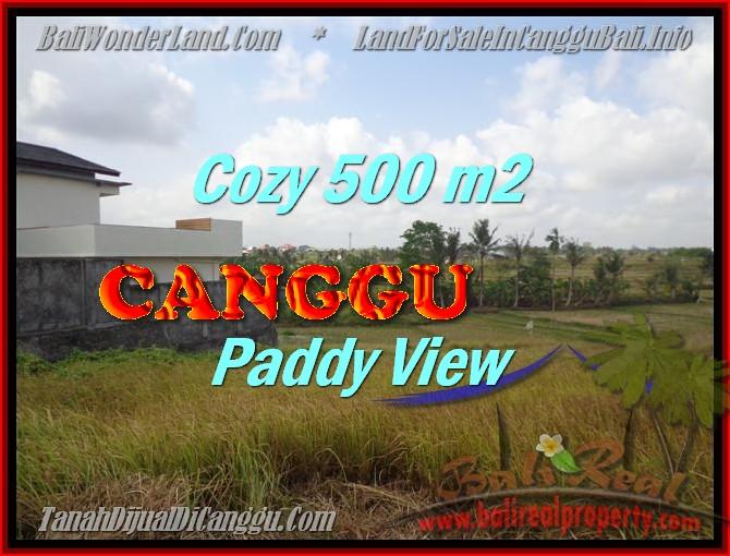 JUAL MURAH TANAH di CANGGU BALI 5 Are View sawah lingkungan villa