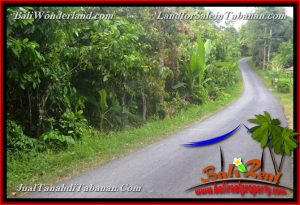 DIJUAL MURAH TANAH di TABANAN BALI Untuk INVESTASI TJTB376