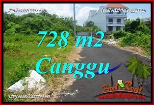 TANAH DIJUAL di CANGGU BALI 728 m2  VIEW SAWAH, LINGKUNGAN VILLA