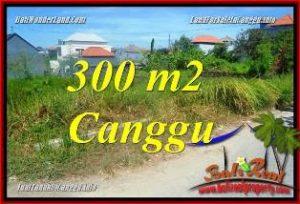 TANAH DIJUAL MURAH di CANGGU TJCG225