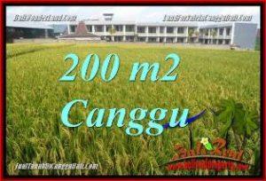 JUAL TANAH di CANGGU BALI TJCG229