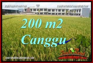 TANAH di CANGGU BALI DIJUAL MURAH 200 m2 VIEW SAWAH, LINGKUNGAN VILLA