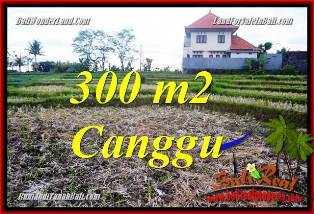 TANAH MURAH di CANGGU DIJUAL TJCG230