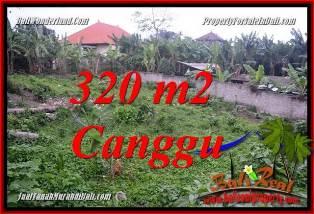 TANAH di CANGGU BALI DIJUAL 320 m2 di CANGGU PERERENAN
