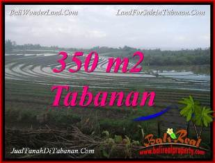 TANAH di TABANAN BALI DIJUAL 350 m2 di TABANAN SELEMADEG