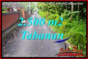 TANAH MURAH di TABANAN BALI DIJUAL 25 Are VIEW KEBUN, LINGKUNGAN VILLA