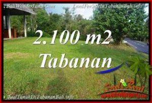 JUAL MURAH TANAH di TABANAN BALI 2,100 m2  VIEW KEBUN