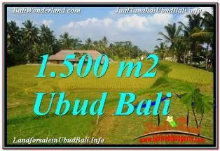TANAH di UBUD BALI DIJUAL Untuk INVESTASI TJUB668