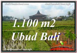 TANAH DIJUAL MURAH di UBUD BALI 1,100 m2 di SENTRAL UBUD