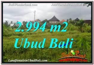 DIJUAL TANAH di UBUD BALI Untuk INVESTASI TJUB672
