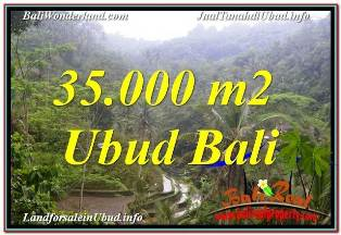 JUAL MURAH TANAH di UBUD BALI 350 Are VIEW SAWAH DAN LOS SUNGAI